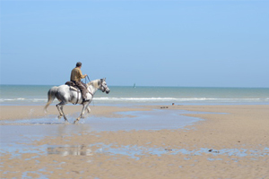 plage-cheval
